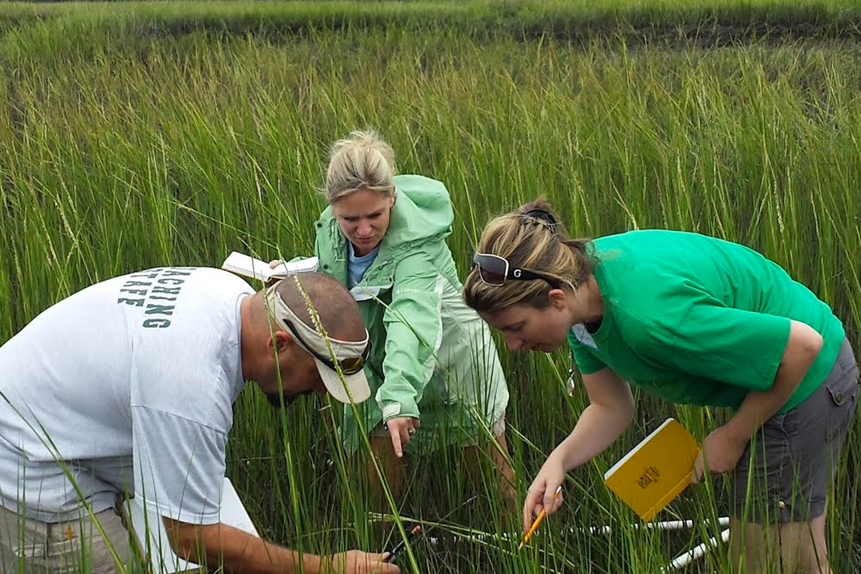 Teacher's Master Naturalist program